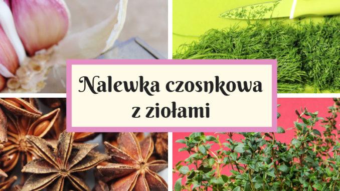 Nalewka czosnkowa z ziołami
