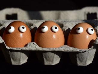 Skorupki jajek - najlepsze źródło wapnia