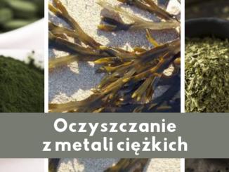 Zioła i rośliny oczyszczające z metali ciężkich
